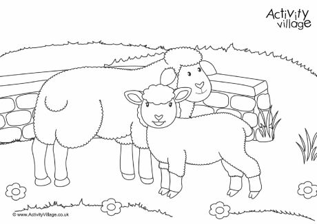 Sheep Scene Colouring Page 2