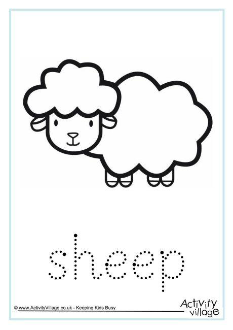 Sheep Word Tracing