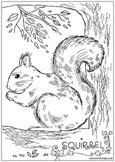 Squirrel Worksheets