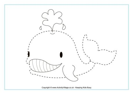Whale Tracing Page