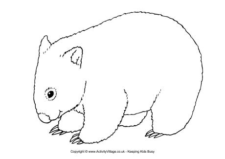 Wombat Colouring Page