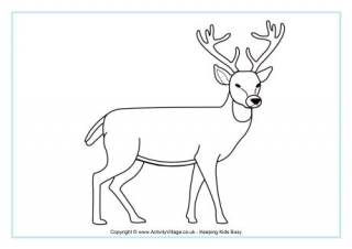 Deer Colouring Page