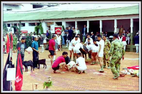 Nepal animal sacrifice