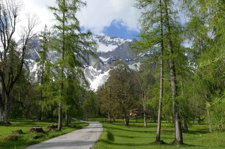 Schladming Dachstein nature