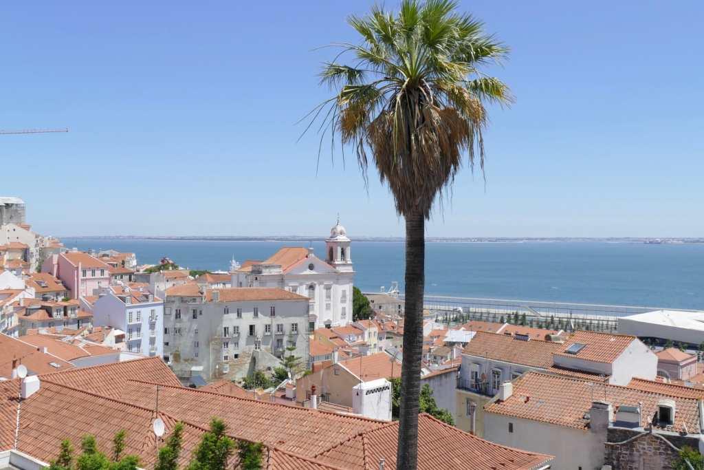 Lisbon sea roofs