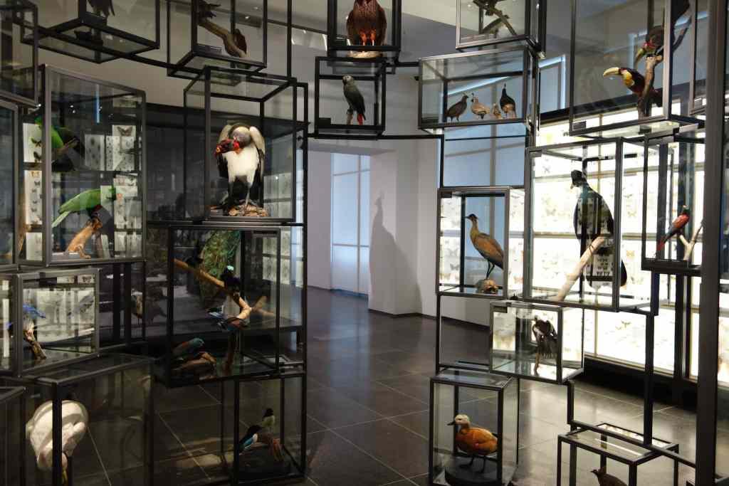 Wiesbaden Museum