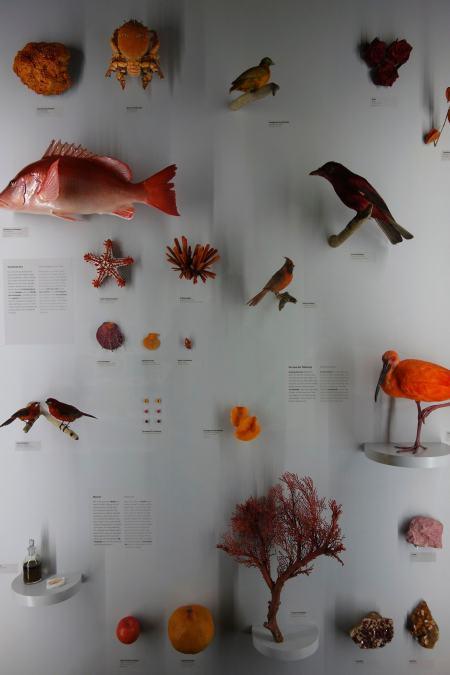 Orange colour Wiesbaden museum