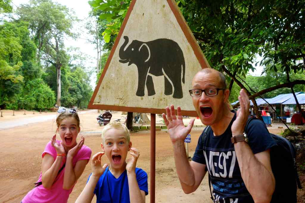 Scared by traffic sign watch out for elephants