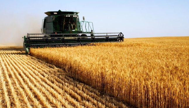 L'agriculture, parent pauvre de la campagne présidentielle