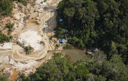 La minería ilegal también viene amenazando a esta importante zona. En el río Shesha, muy cerca de donde empieza el área protegida, pudimos observar los rezagos de la minería ilegal. Poco a poco, esta actividad va dejando huellas y cicatrices sobre el bosque.