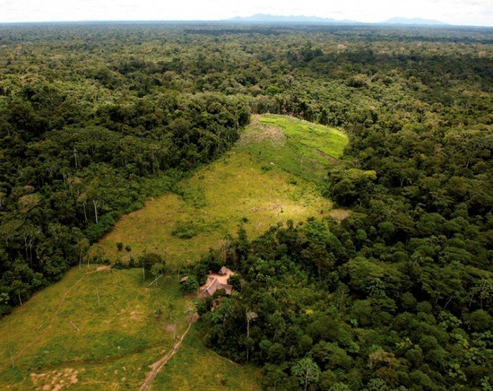 Sierra del Divisor_deforestación_SPDA2