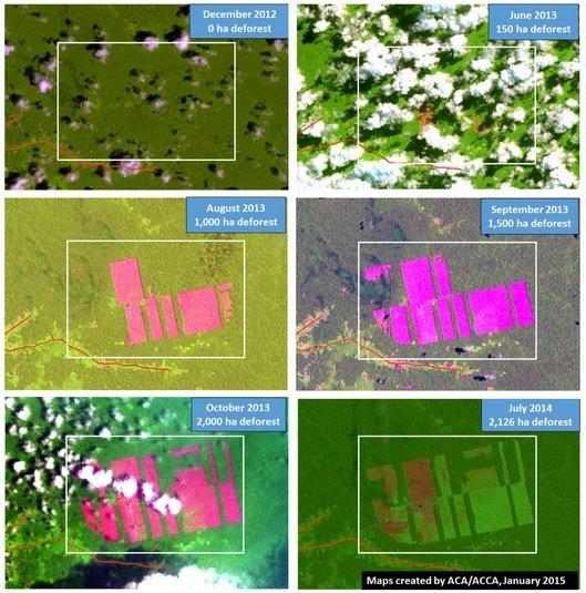 deforestación desde 2012