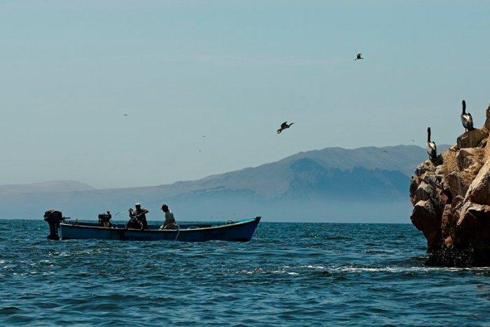 Reserva nacional punta guaneras_Sernanp2