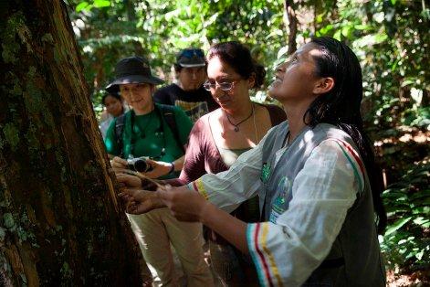 Danny Tapullima, Presidenta del Bosque de los Niños (BONI), guía a un grupo de visitantes a través de las variedades de árboles y sus propiedades medicinales.