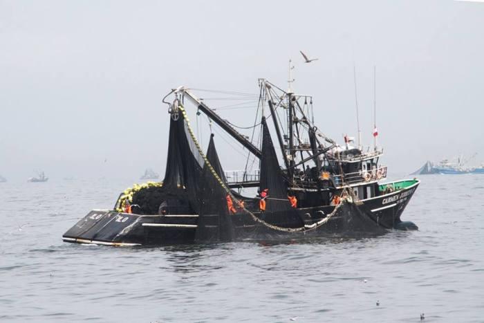 pesca - oceana