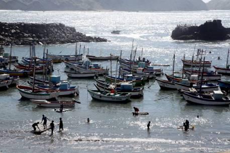 Convertir al Mar Pacífico Tropical en un área natural protegida, ayudará a conservar las especies destinadas al consumo humano y asegurará la actividad económica de los pescadores.
