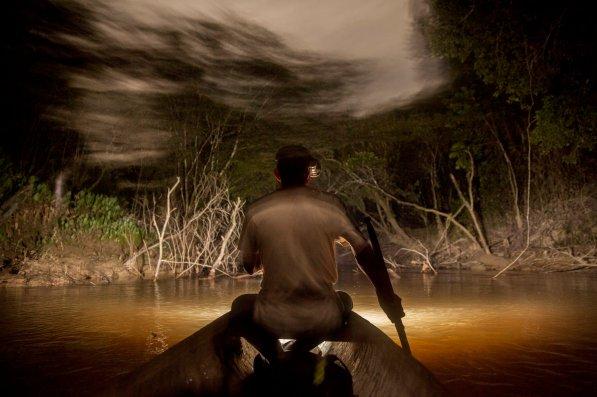 Remando silenciosamente río abajo, Carlos alumbrará las orillas con una linterna amarrada a una lado de la cabeza, sobre la oreja. Cuando la presa reciba el haz de luz, se pasmará y permanecerá sin moverse. El tiempo será el adecuado para que Carlos encuentre al animal en su mira, apunte, respire levemente y dispare.