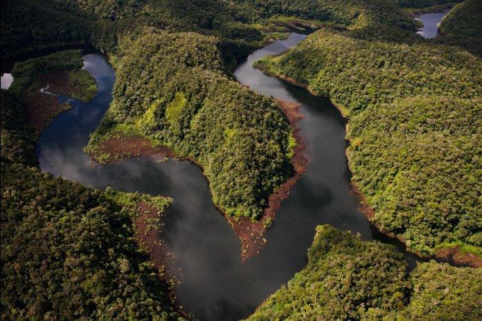 alto_purus_ucayali_actualidad_ambiental