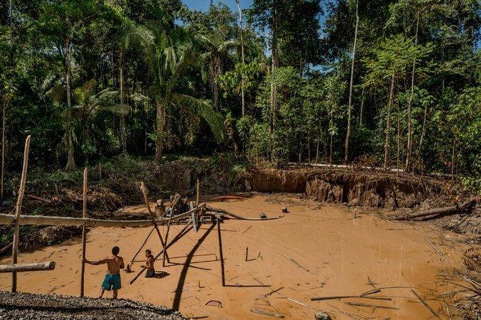 madre_de_dios_actualidad_ambiental_reserva_nacional_tambopata_4