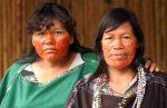 pueblos-indigenas-spda