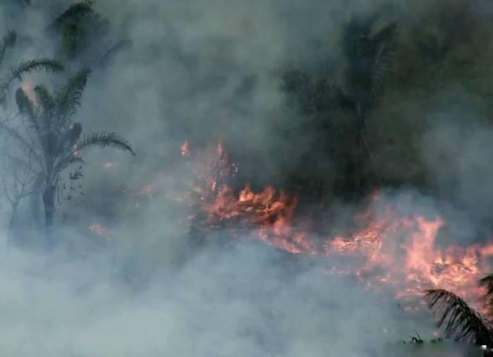 incendio-forestal-serfor