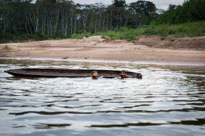 Dos niños de la etnia amahuaca juegan en el río. En esta época del año sus aguas son tan bajas que casi no se pueden navegar, pero son ideales para nadar, algo que estos muchachos dominan a la perfección desde chiquitos.
