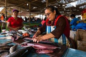 En el mercado principal de Chimbote se encuentra una de las secciones de pescados y mariscos más variadas del litoral. Día a día, cientos de personas pasan por este para comprar los alimentos que sustentan sus familias.