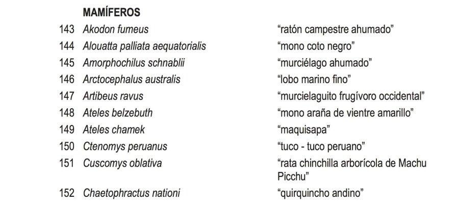 trafico_fauna_silvestre_quirquincho_andino_actualidad_ambiental_3