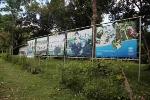 El CREA fue conformado en el 2007, por iniciativa de Javier Velásquez, biólogo de la Universidad Nacional de la Amazonía Peruana. Junto con las autoridades, se comprometieron a rescatar y rehabilitar a los manatíes y otros mamíferos que eran decomisados.