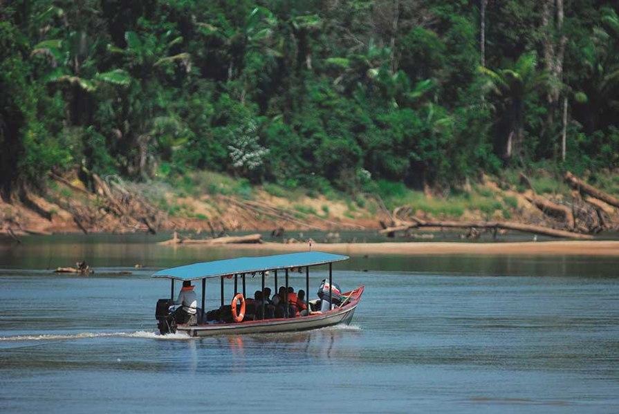Esta vasta biodiversidad y belleza paisajística hace de Manu un destino turístico único en el mundo, donde la actividad convive armoniosamente con la naturaleza. Foto: Sernanp