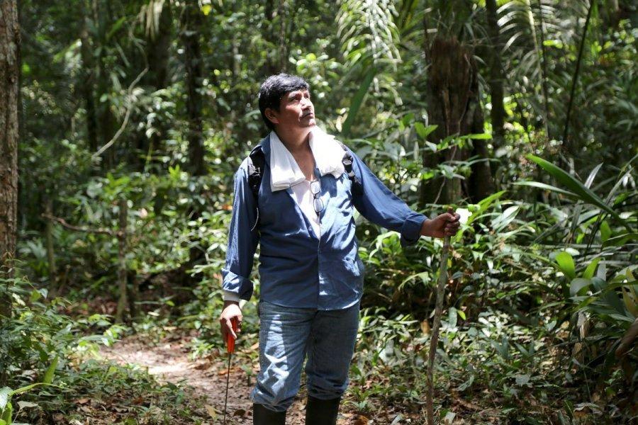 Demetrio Lleva Ms De 30 Aos Realizando Actividades Sostenibles En Su Concesin Forestal Ubicada A La Altura Del Kilmetro 70 Carretera Interocenica