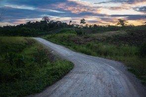 3. Para unir Yurimaguas con Jeberos, otro distrito ubicado también en Alto Amazonas, a mediados del 2017 se empezaron los trabajos de construcción de una carretera.