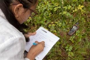 Miembros de la Dirección de Asuntos Ambientales de la Dirección Regional de Transportes y Comunicaciones del Gobierno Regional de Loreto realizando mediciones en campo.