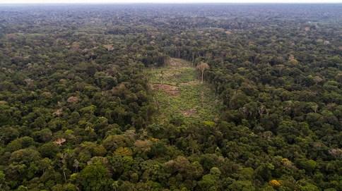 Imagen de uno de los muchos puntos deforestados dentro de los bosques de la comunidad nativa Centro Arenal.