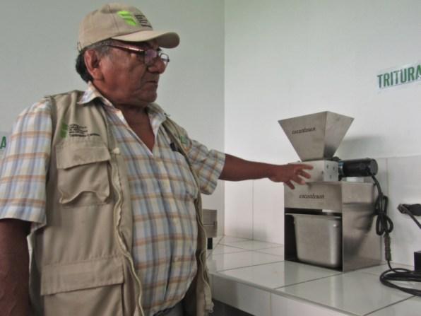Planta de Cacao-SPDA