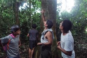 Defensores Ambientales-SPDA-4