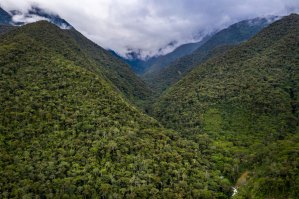Chuyapi Urusayhua: joya cusqueña espera convertirse en área de conservación regional
