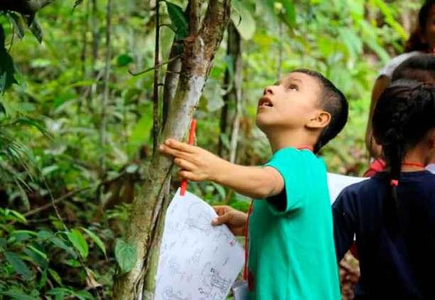 Circuito etnobotánico. Foto: Amazon Forever Biopark