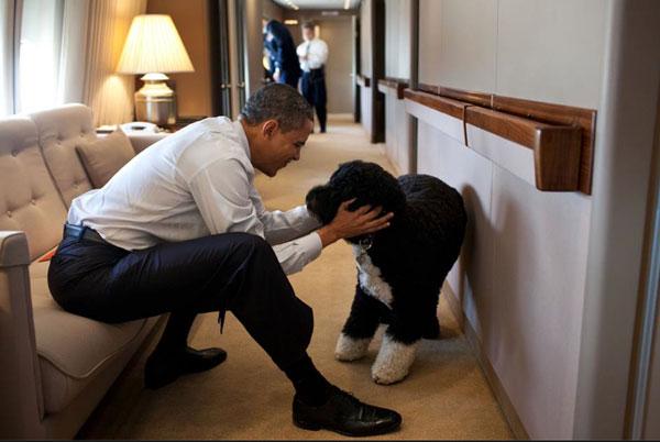 Barack y Bo, solo amores siempre y cuando haya cámaras cerca.