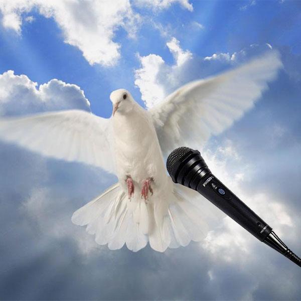 El Espíritu Santo, en entrevista exclusiva para Actualidad Panamericana