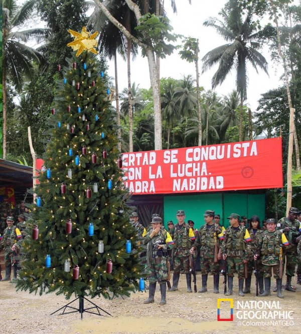 El árbol de navidad, pero resistente y proletario, de las Farc, esta mañana en Planadas.