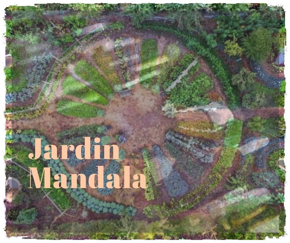 You are currently viewing Connaissez vous le jardin mandala?