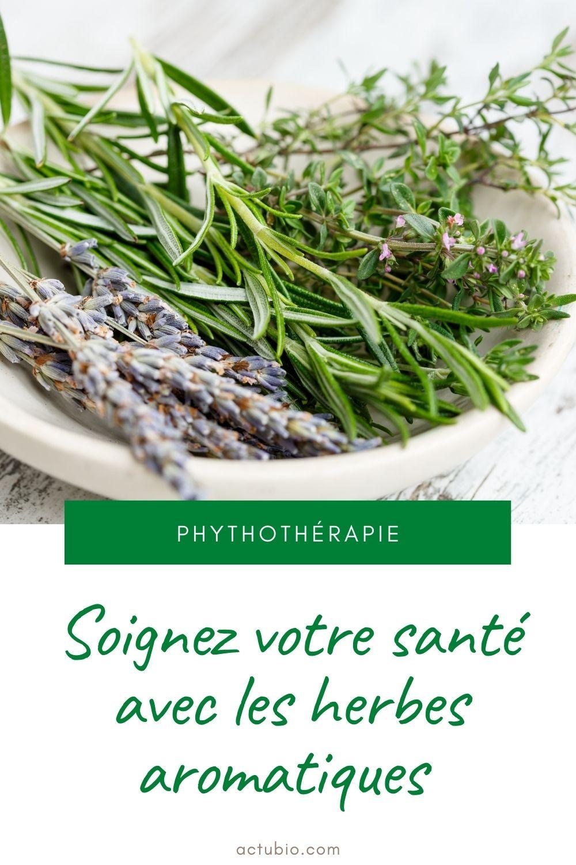 Soignez votre santé avec les herbes aromatiques