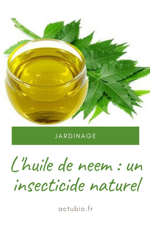 L'huile de neem est un excellent insecticide naturel, une bonne alternative aux produits chimiques