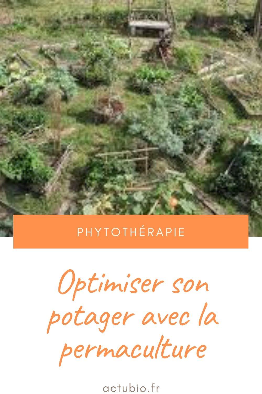 Comment optimiser son potager avec la permaculture ?