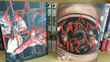 Notre avis sur les tomes 2 et 3 du manga de Meian