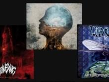 Les albums coups de cœur d'AMT #3