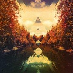 WEEDPECKER + WITCHFINDER + BARON CRANE @ L'Usine A Musique