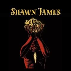 SHAWN JAMES @ L'Usine A Musique