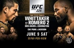 POSTER-UFC-225